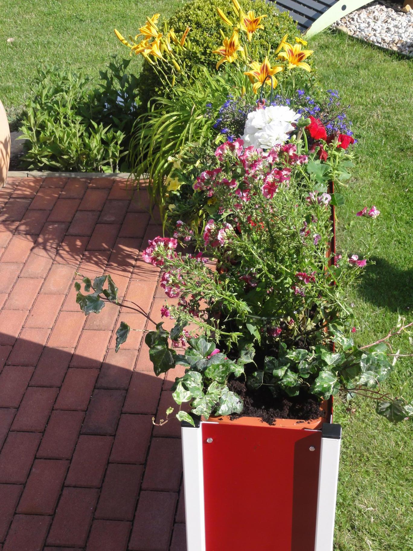 Pflanzkasten Blumenkasten IN Farbe größe 90 cm x 63 cm