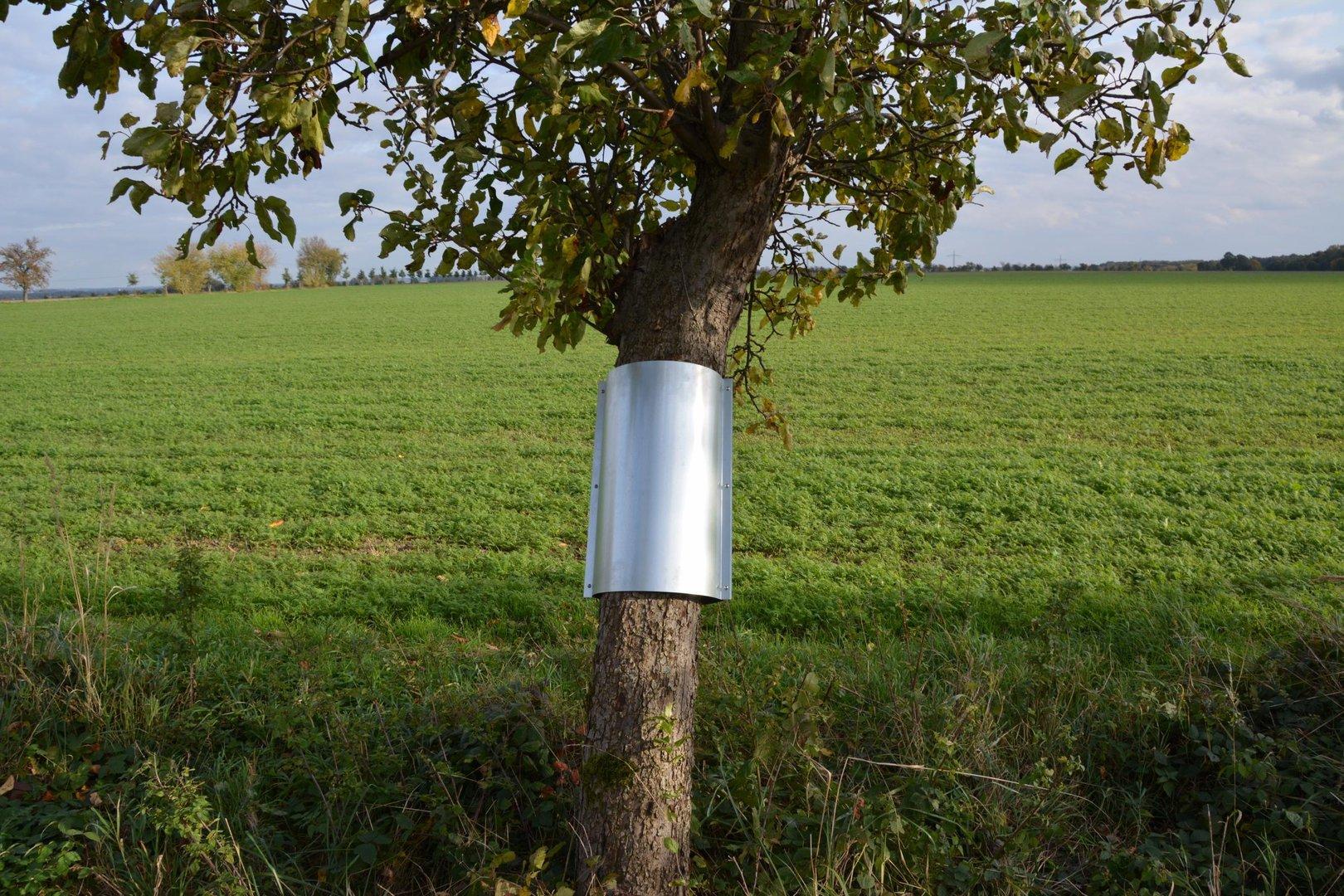 für Bäume verzinkt D 20 cm